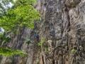 damai-wall-1-6