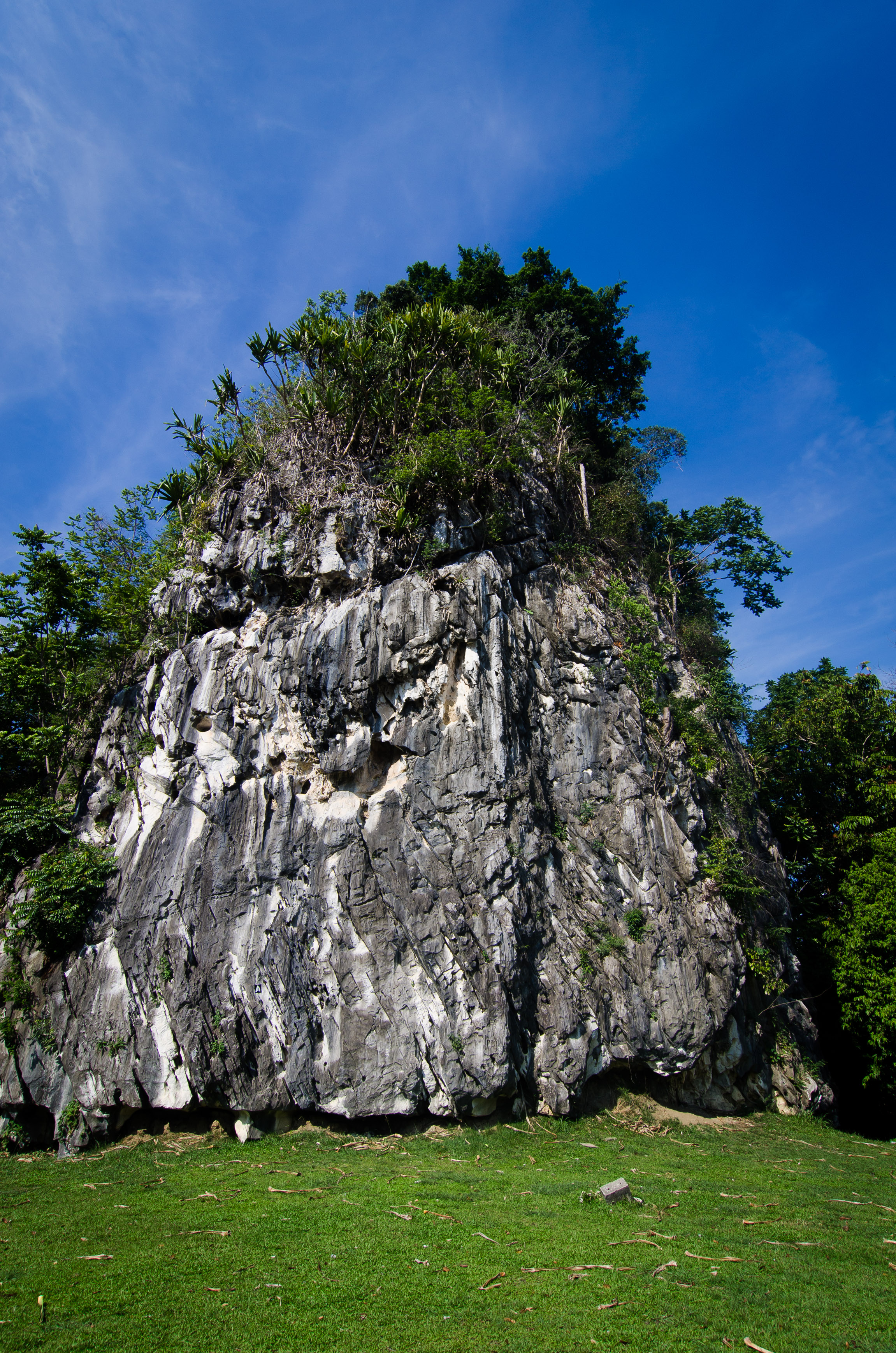 Gua Musang Taman Etnobotani